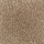 Aladdin Carpet: Classical Design 12 Desert Mud