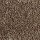Aladdin Carpet: Classical Design 12 Rustic Beam