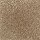 Aladdin Carpet: Classical Design II 12' Desert Mud