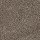 Aladdin Carpet: Classical Design II 12' Rustic Beam