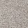 Aladdin Carpet: Crestview Warmest Beige