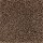 Aladdin Carpet: Silent Wonder Rustic Brown