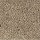 Aladdin Carpet: Simply Soft I Colonial Brown