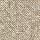 Aladdin Carpet: Soft Sands II 12' Bayleaf