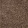 Aladdin Carpet: Striking Appearance Sumatra Blend