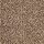 Aladdin Carpet: Tonal Chic II Desert Crackle