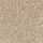 Aladdin Carpet: Tonal Chic II Kraft Paper