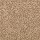 Aladdin Carpet: Tonal Chic II Warm Nutmeg