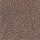 Aladdin Carpet: Urban Studio Velvet Brown