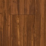 Bamboo Hardwoods Flooring