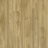 Columbian Oak