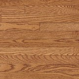 Westchester Strip
