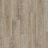 COREtec Galaxy Plank