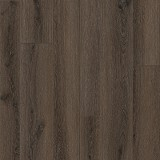 Scandia Oak