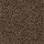 Horizon Carpet: Cozy Comfort Burnished Brown