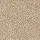 Horizon Carpet: Exceptional Choice Caramel Ripple
