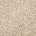Horizon Carpet: Exquisite Element Gentle Taupe