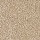 Horizon Carpet: Noteworthy Selection Caramel Ripple