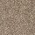 Horizon Carpet: Noteworthy Selection Timberlane