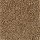 Horizon Carpet: Simonton Beach Antique Brown