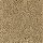 Horizon Carpet: Simonton Beach Golden