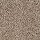 Horizon Carpet: SP50 (S) 13