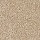 Horizon Carpet: Striking Option Caramel Ripple