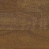 Brazilian Chestnut