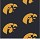 Milliken Carpets: Collegiate Repeating Iowa Hawkeyes